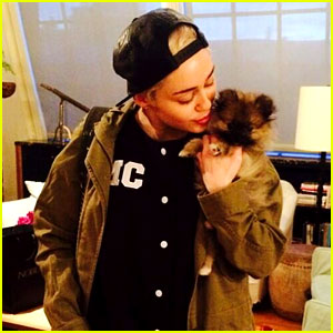 Miley Cyrus Places Her New Dog Moonie in a New Home