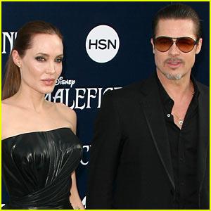 Brad Pitt Files Temporary Emergency Restraining Order Against Red Carpet Attacker Vitalii Sediuk