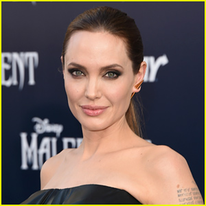 Angelina Jolie Lines Up Next Directing Project: Elephant Poaching Film 'Africa'
