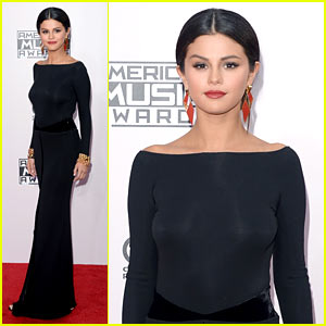 Selena Gomez Stays All Covered Up on AMAS 2014 Red Carpet