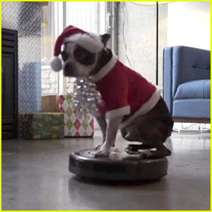 This 'Dog on a Roomba' Video Is Totally Winning Christmas!