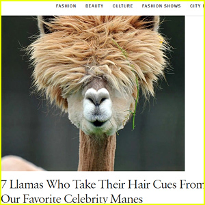 Vogue's Website Is Currently Covered in Llama Articles