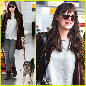 Dakota Johnson Travels Solo with Her Pet Pooch By Her Side