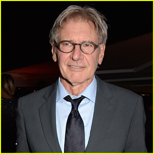 Harrison Ford's Rep Reveals His Condition After Plane Crash