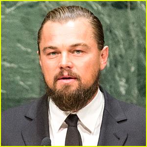 Leonardo DiCaprio Invests in Mattress Business with Tobey ...  Leonardo Dicaprio