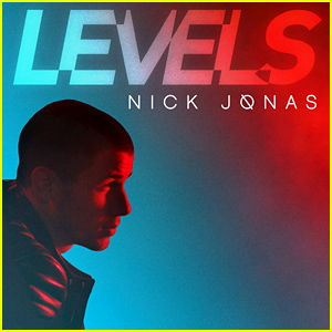 Nick Jonas Previews 'Levels' Music Video - Watch Now!