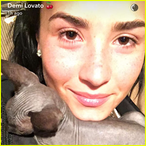 Demi Lovato Introduces Her New Cat on Snapchat