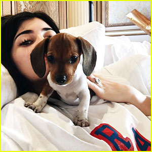 Kylie Jenner Gets New Puppy Penny for Birthday!