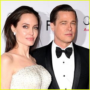 Angelina Jolie & Brad Pitt Celebrate Second Wedding Anniversary!