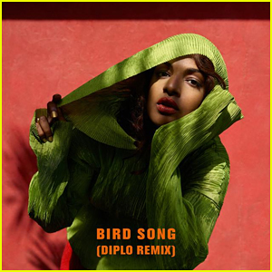 M.I.A. Debuts Diplo Version Of 'Bird Song' Stream & Lyrics - LISTEN NOW!