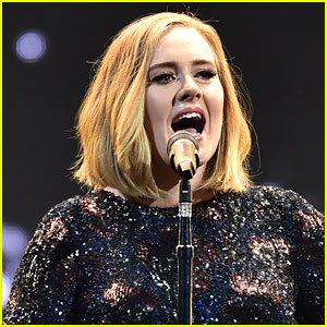 Adele Announces Plans for Another Child After Wrapping Tour!