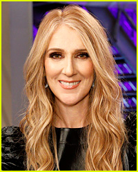 Could Celine Dion Become a Full Time Coach on 'The Voice'?
