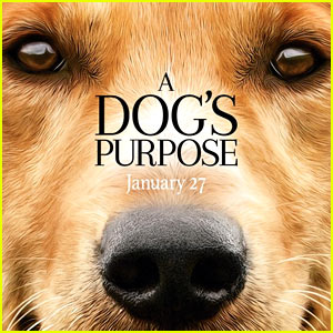 'A Dog's Purpose' Sparks Controversy Over Leaked Video