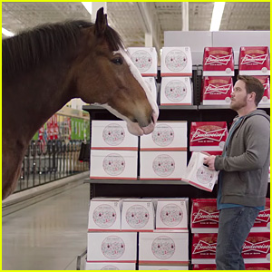 Watch Budweiser's Best Clydesdales Super Bowl Commercials