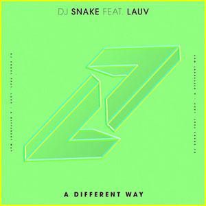 DJ Snake & Lauv: 'A Different Way' (Co-Written By Ed Sheeran) - Stream, Lyrics & Download!