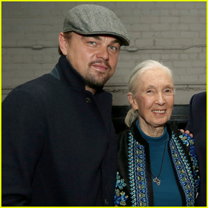 Leonardo DiCaprio Attends 'Jane' Screening With Dr. Jane Goodall