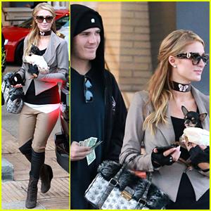 Paris Hilton & Boyfriend Chris Zylka Go Shopping With Her Chihuahua