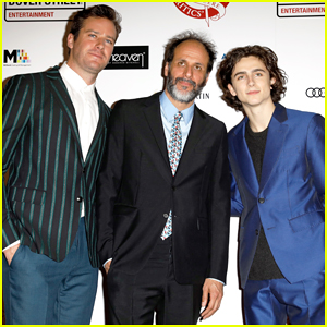 Timothee Chalamet & Armie Hammer's 'Call Me by Your Name' Director Luca Guadagnino Reveals Sequel Plans!