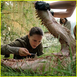 Is There an 'Annihilation' End Credits Scene?