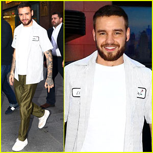 Liam Payne Rocks Olive Green Silk Pants While Out in NYC