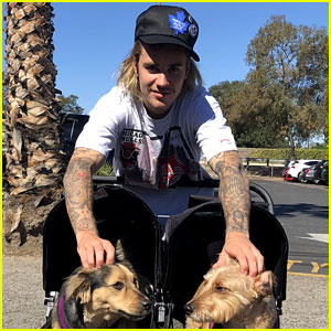 Justin Bieber Poses With Two Dogs in a Stroller Before Soccer Game
