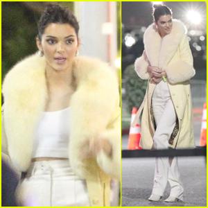 Kendall Jenner Bundles Up for Fleetwood Mac Concert!