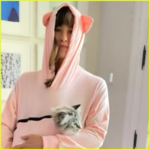 Jennifer Garner Stuffed Her Cat Moose In A Hoodie On Instagram & He Is Not Amused